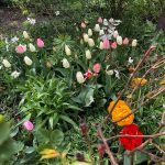 Vackraste trädgården i Älvsjö